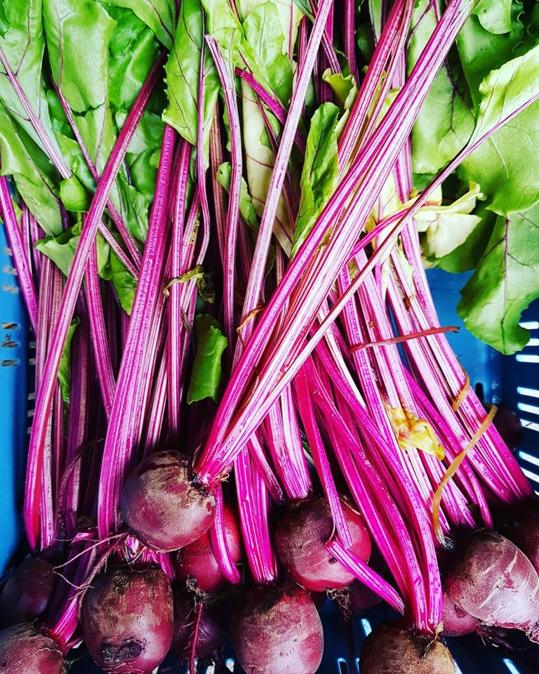 Organic Beetroot from Shanbally Farm